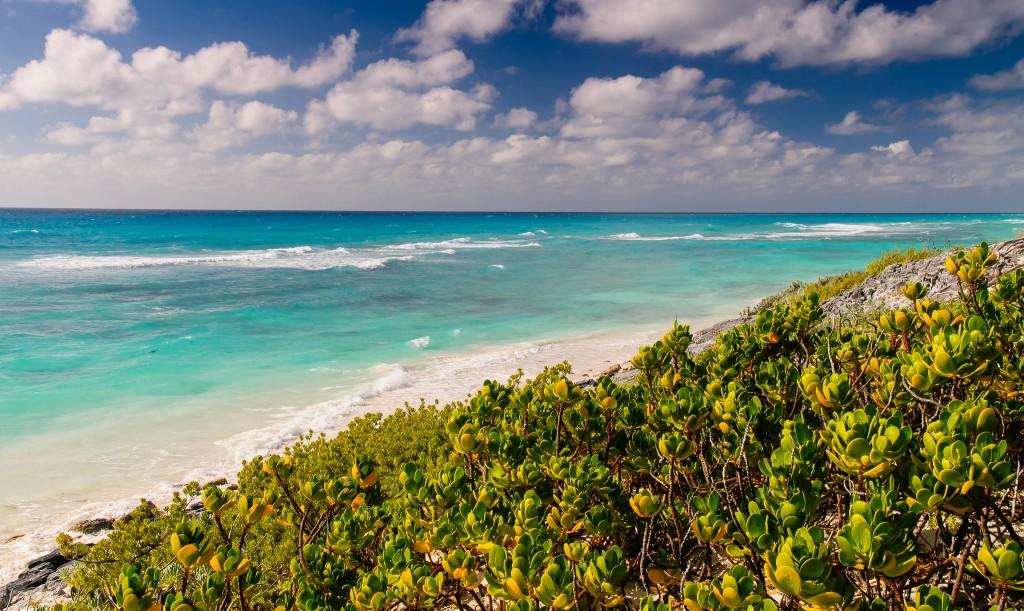 Фото природы Кубы