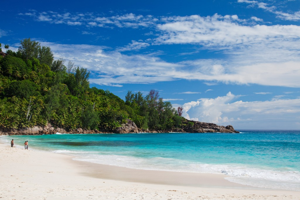Фото природы Сейшельских островов