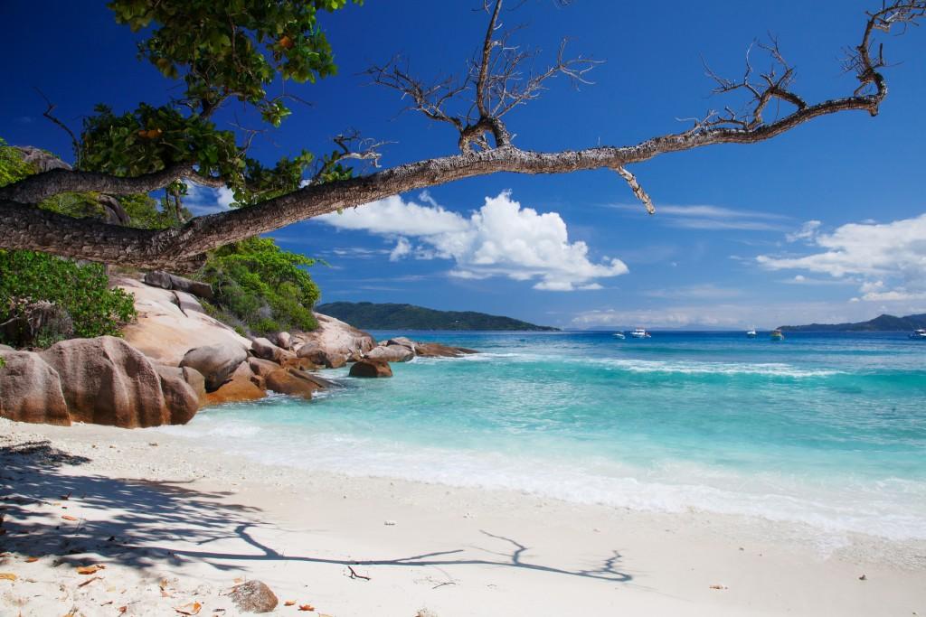 Фото пляжа на Сейшелах