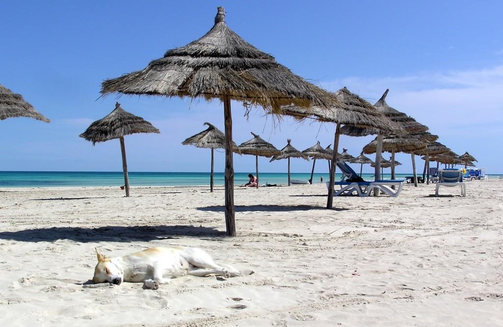 Фото пляжа в Тунисе
