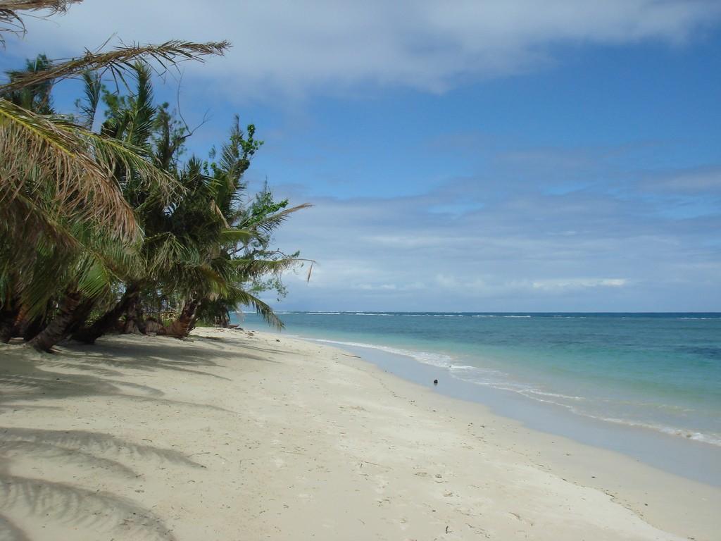 Фото пляжа на Мадагаскаре