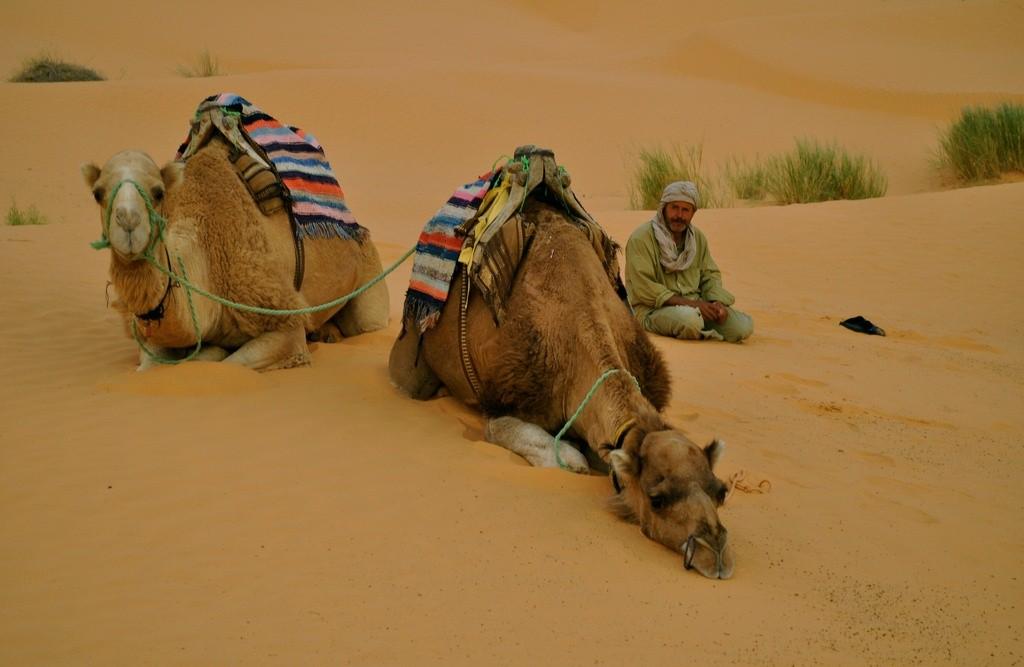 Фото пустыни в Тунисе