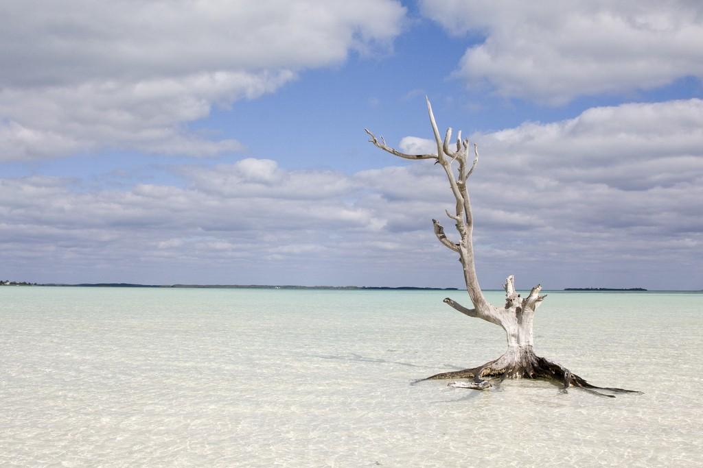 Фото моря на Багамах.
