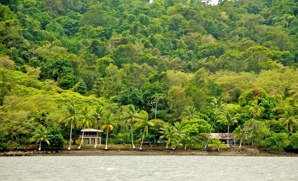 Фото природы Коста-Рики