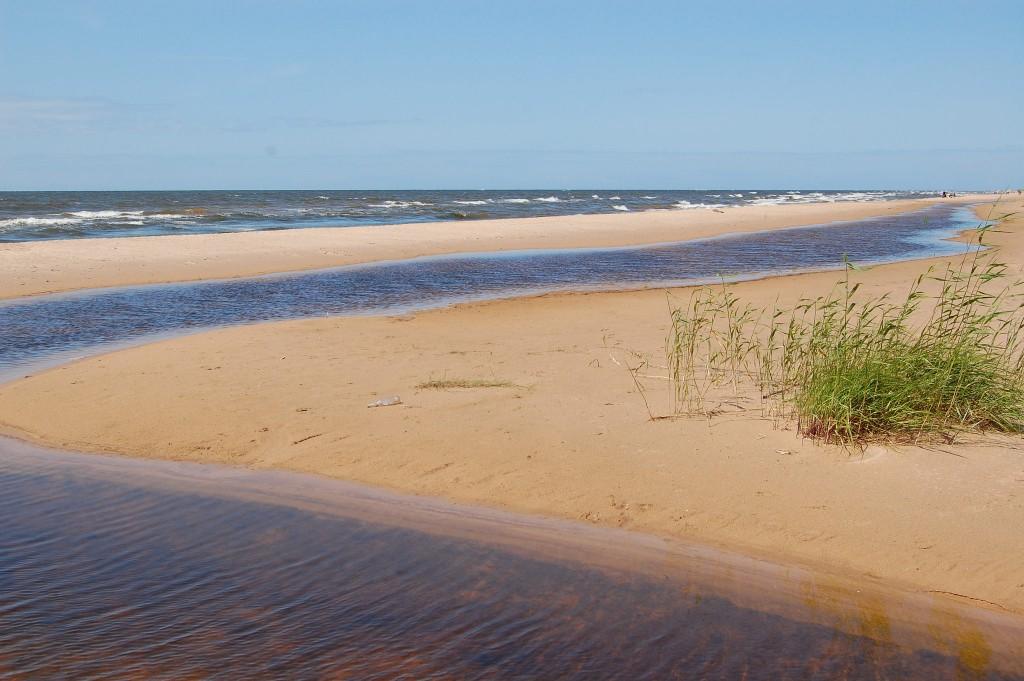 Фото побережья Балтийского моря