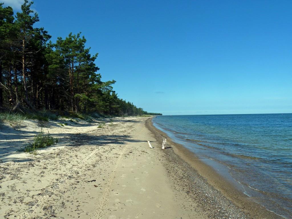 Фото дикого пляжа в Эстонии