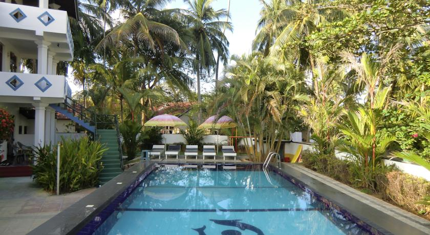 Фото отеля The Oasis Villa
